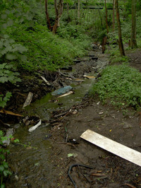 Clough_debris_in_brook