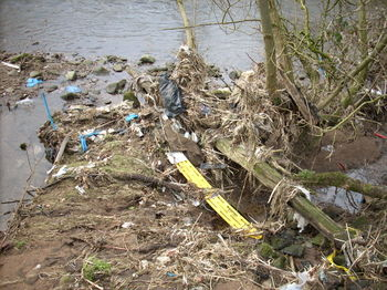 Waterborne_debris_at_hoghton_bott_2